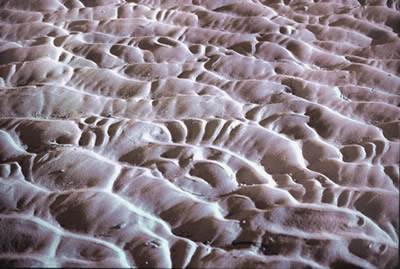 Tidal sand patterns, photo by Wayne Roberts